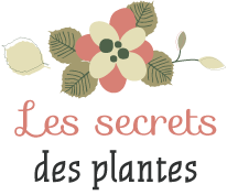logo_lessecretsdesplantes.png